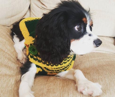 Olivia Munn Instagram